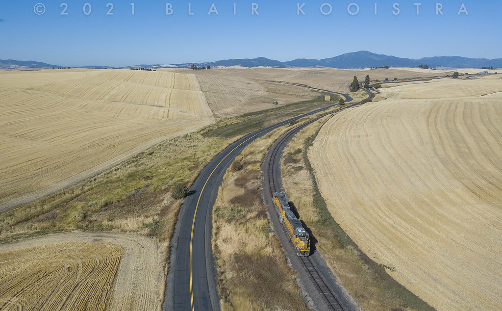 Geeps in the Palouse. . . .