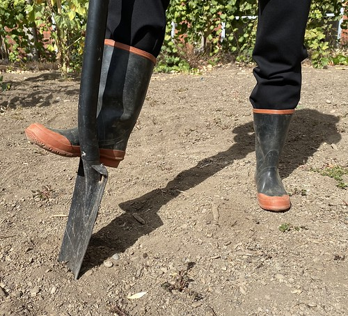 Planting with shovel