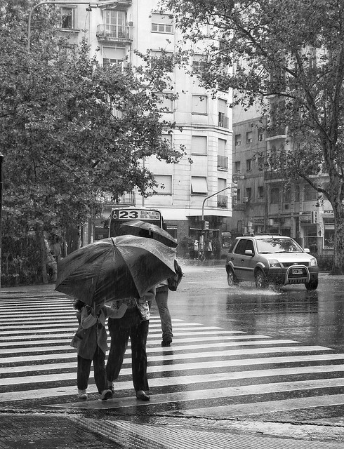 Cronicas de la lluvia
