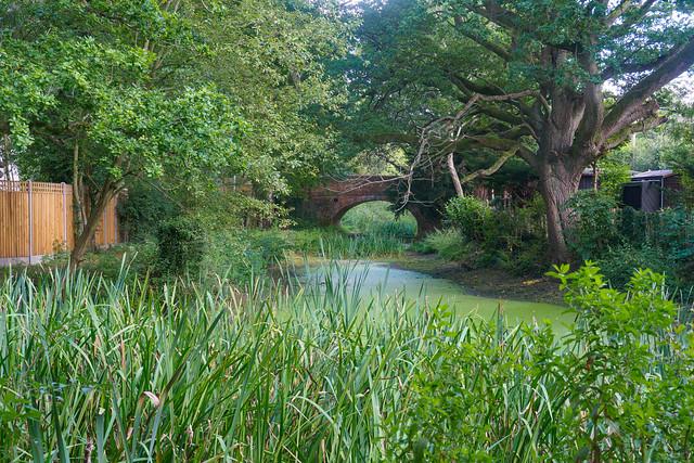Basingstoke Canal West of Greywell-G9150478