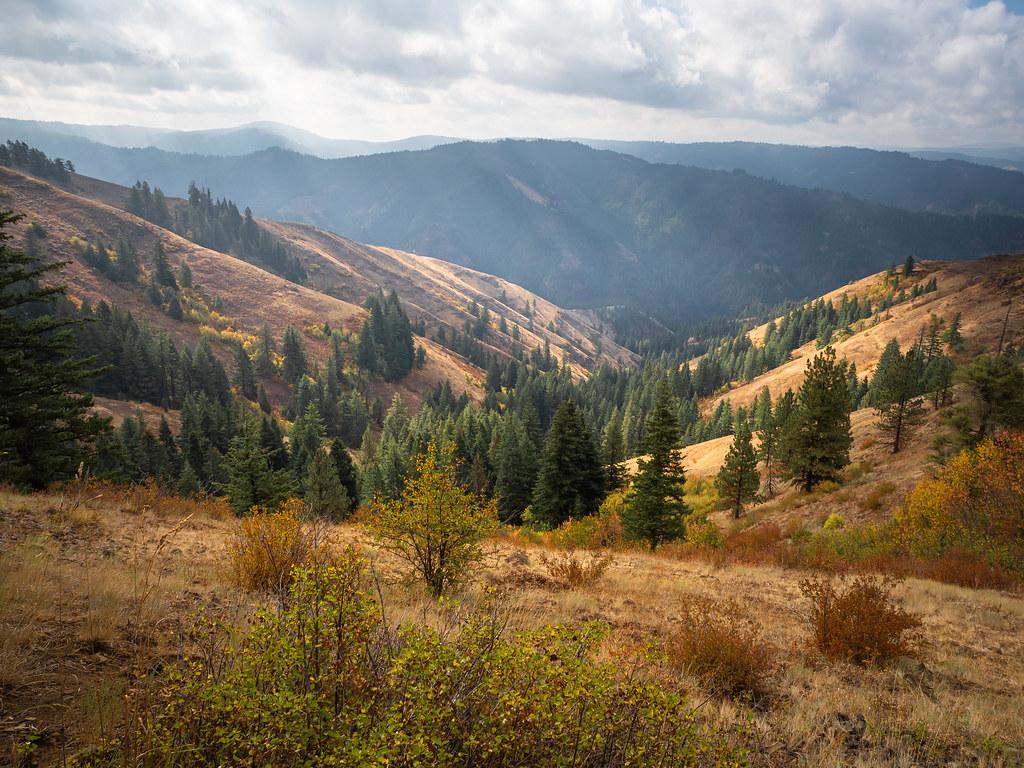 Hints of Fall at 4,000ft