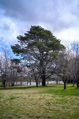 Barrenjoey Peninsula, Canberra