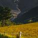 Andorra landscape: Sant Julia, Gran Valira, Andorra