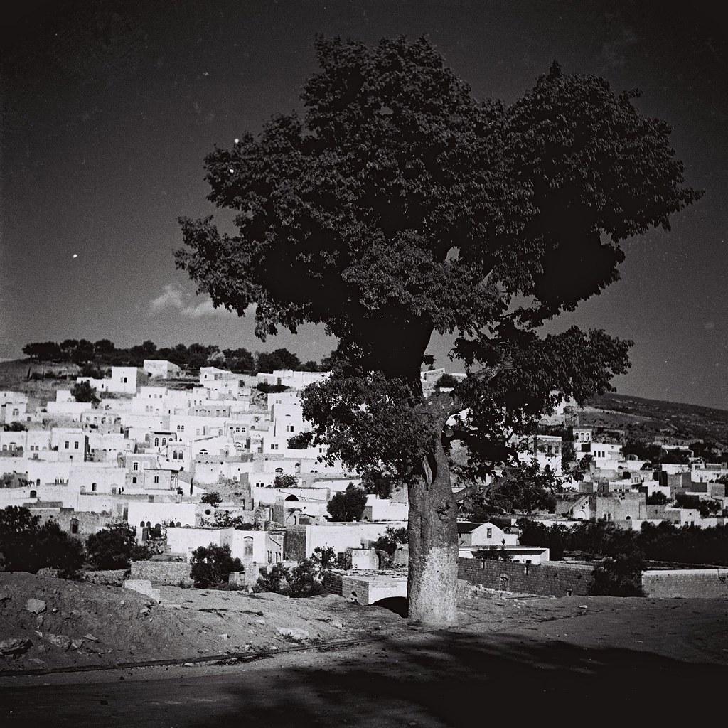 1934. Вид Цфата