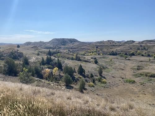 somewhere near Little Missouri National Grassland (North Dakota)