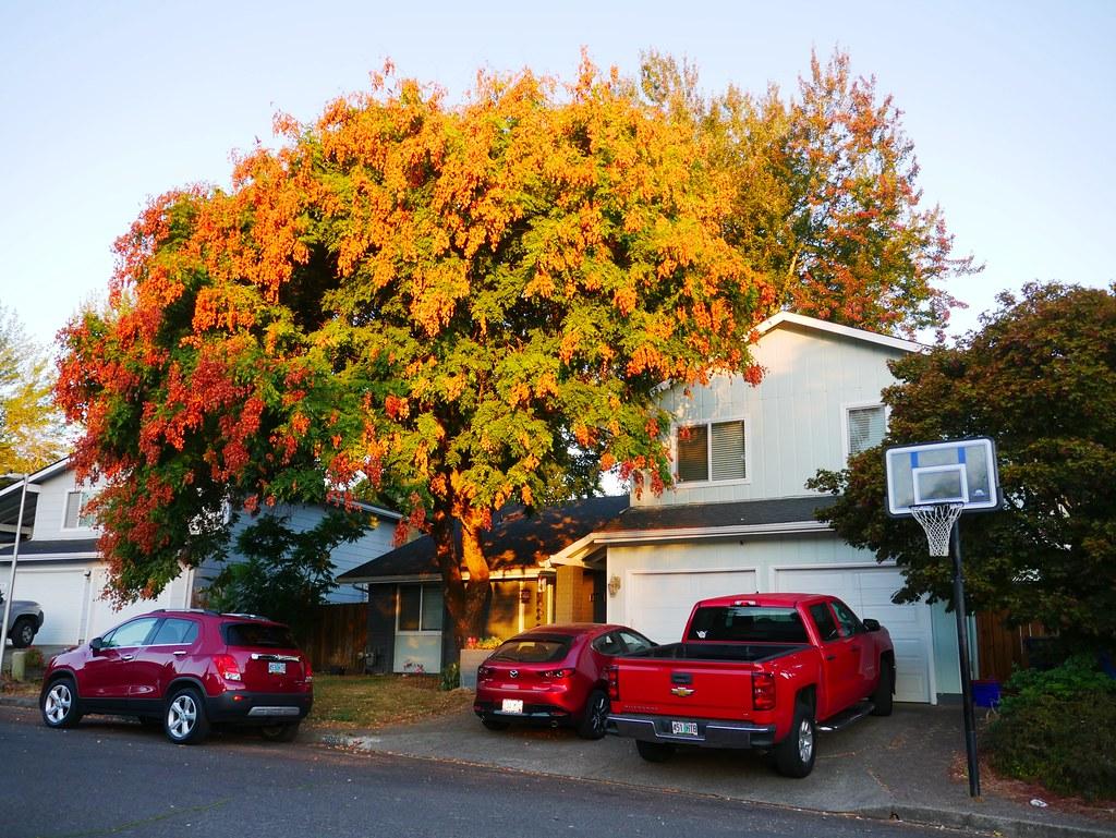 3889 Kevington Avenue in Eugene, Oregon