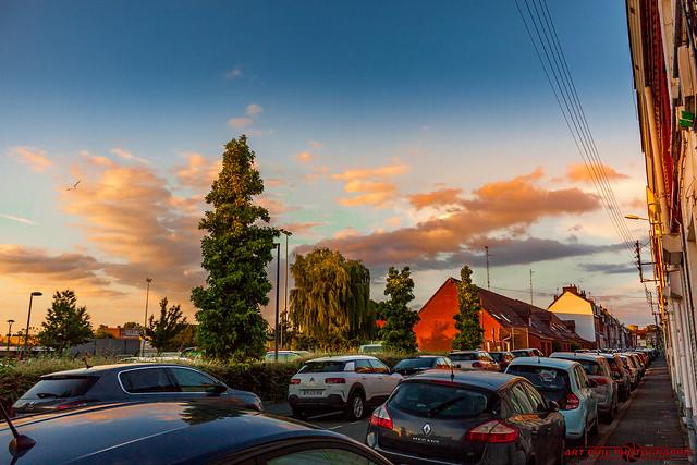 Paysages Nature et Sunset