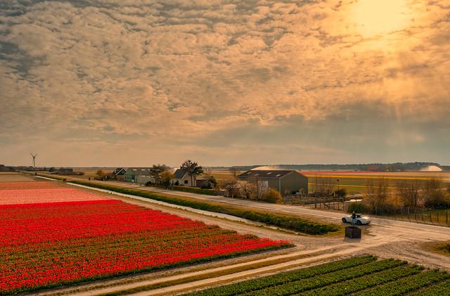 Belkmerweg near Land van Fluwel Avonturenparadijs.