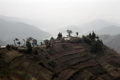 UG Kisoro area view - 1965 (W65-A81-21)