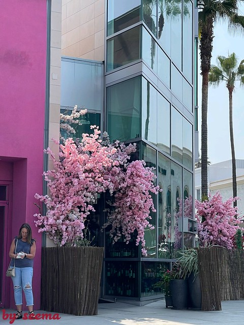 Beverly Hill Golden Triangle Calif