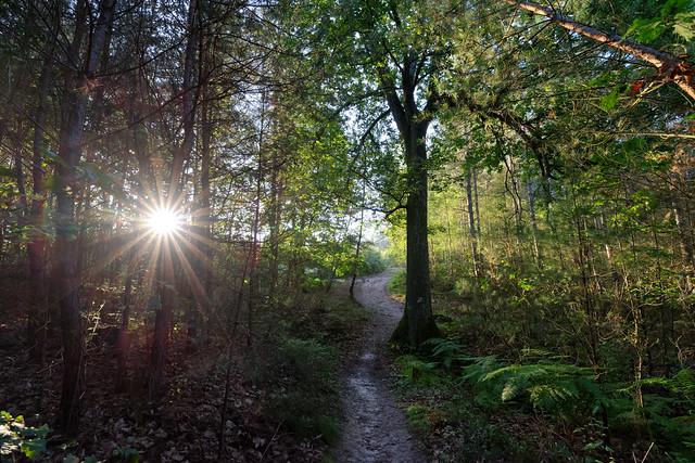 GR1  Hiking trail