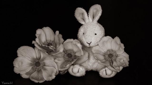 10159 - floral fantasy #SmileOnSaturday