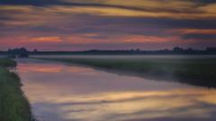 Foggy polder