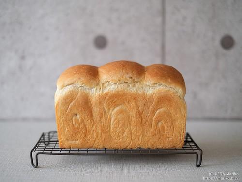 酒種食パン 20210917-DSCF0583 (3)