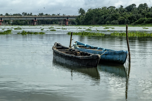 More from the limpid blues of Kerala