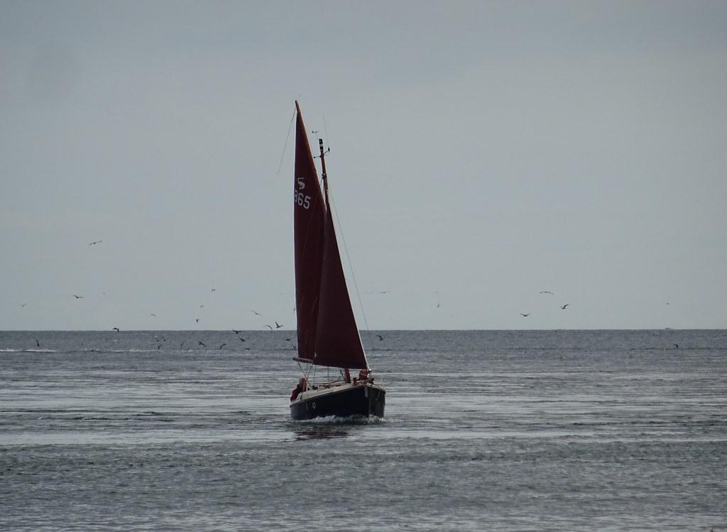 """""""Arwin"""" Cornish Shrimper 19"""