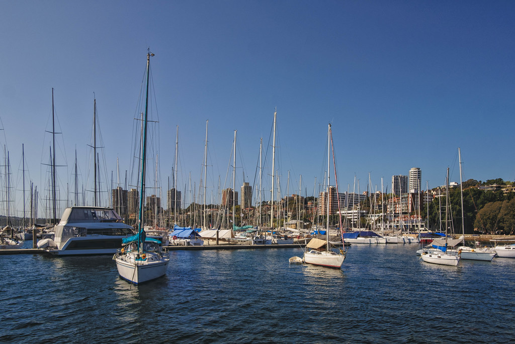 Rushcutters Bay 1
