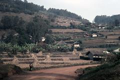 UG Kisoro area view - 1965 (W65-A81-14)