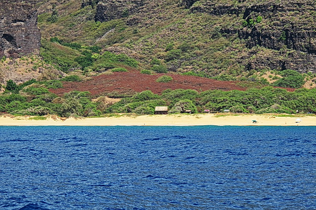 Kauai - Captain Andy's Na Pali Coast tour - Polihale State Park beach