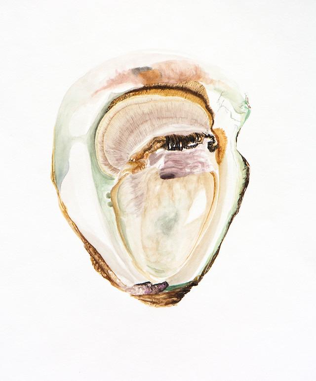 """Lena Beckley, Oyster, Art Print, 8"""" x 10"""""""