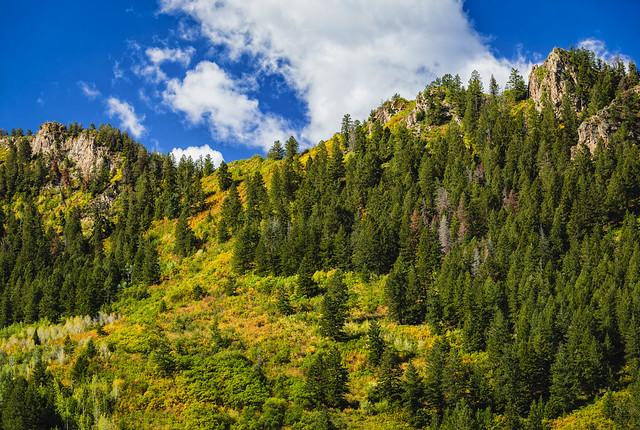 Shadow Mountain in Aspen