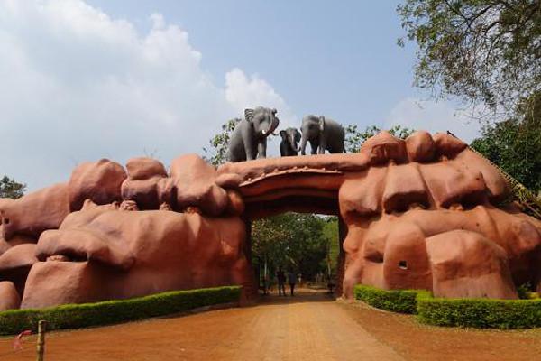 Chandaka-Elephamt-odisha-lead-utkal-today