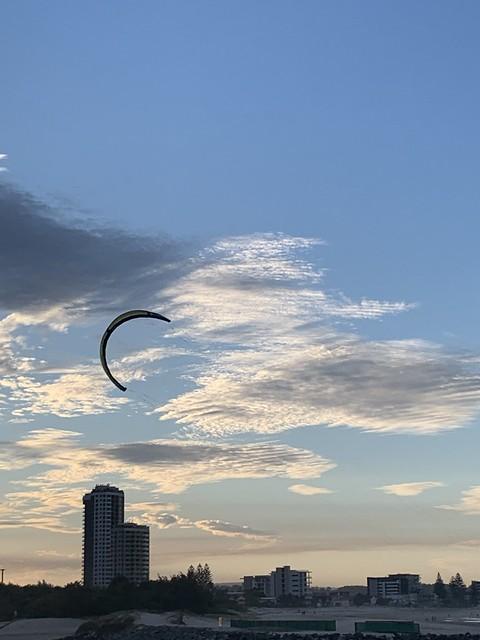 Roaming the skies.