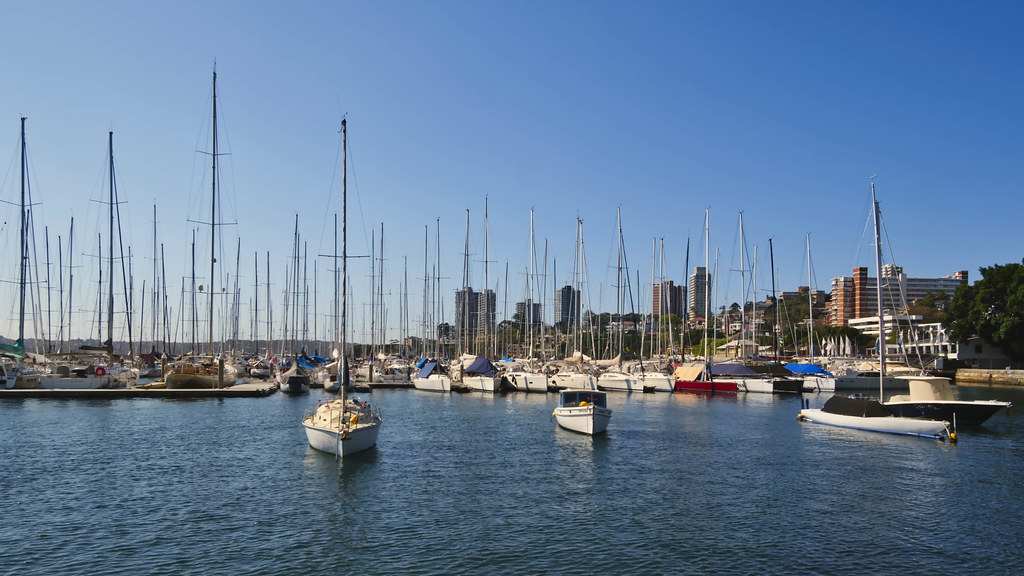 Rushcutters Bay.2