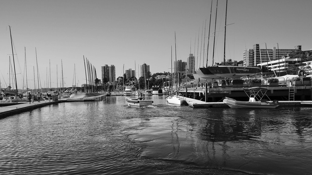 Rushcutters Bay.4