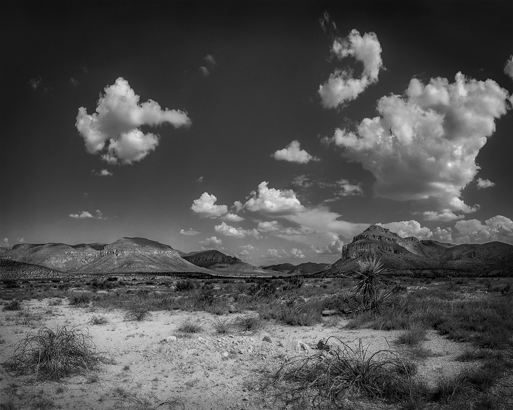 Black Gap Wildlife Management Area (WMA), Texas