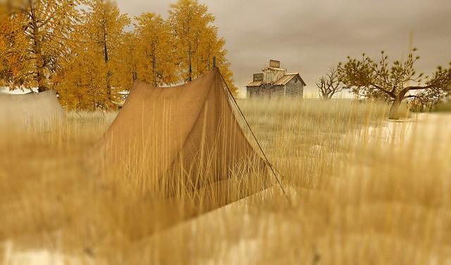 Autumn at IMAGO Land
