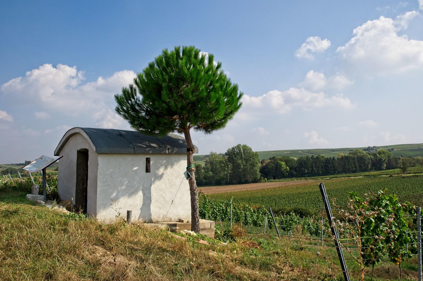 Himmelbergshäuschen - Biblischer Weinpfad Partenheim