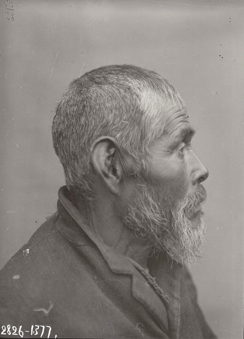 1909. Июнь - июль.  Дмитрий Прокопьев (профиль). Атту остров
