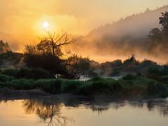 Golden mist  (由  Karsten Gieselmann
