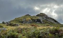 Ingra Tor, Dartmoor, England
