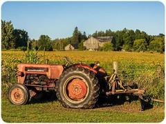 Old Faithful. #farmlife #farmcountry #kawarthas #tractorsofinstagram #workhorse #mykawarthas #ontariotravel