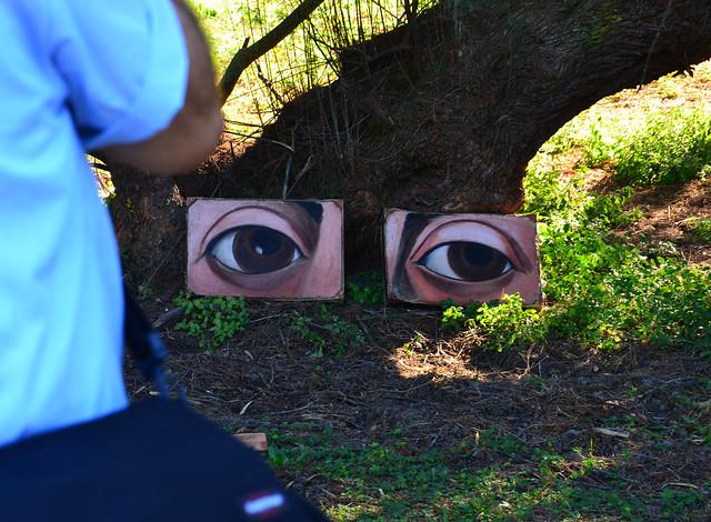 Marina Haas, ...se la terra avesse gli occhi... avrebbe un punto di vista suo. E forse insieme potremmo dare uno sguardo fuori confine