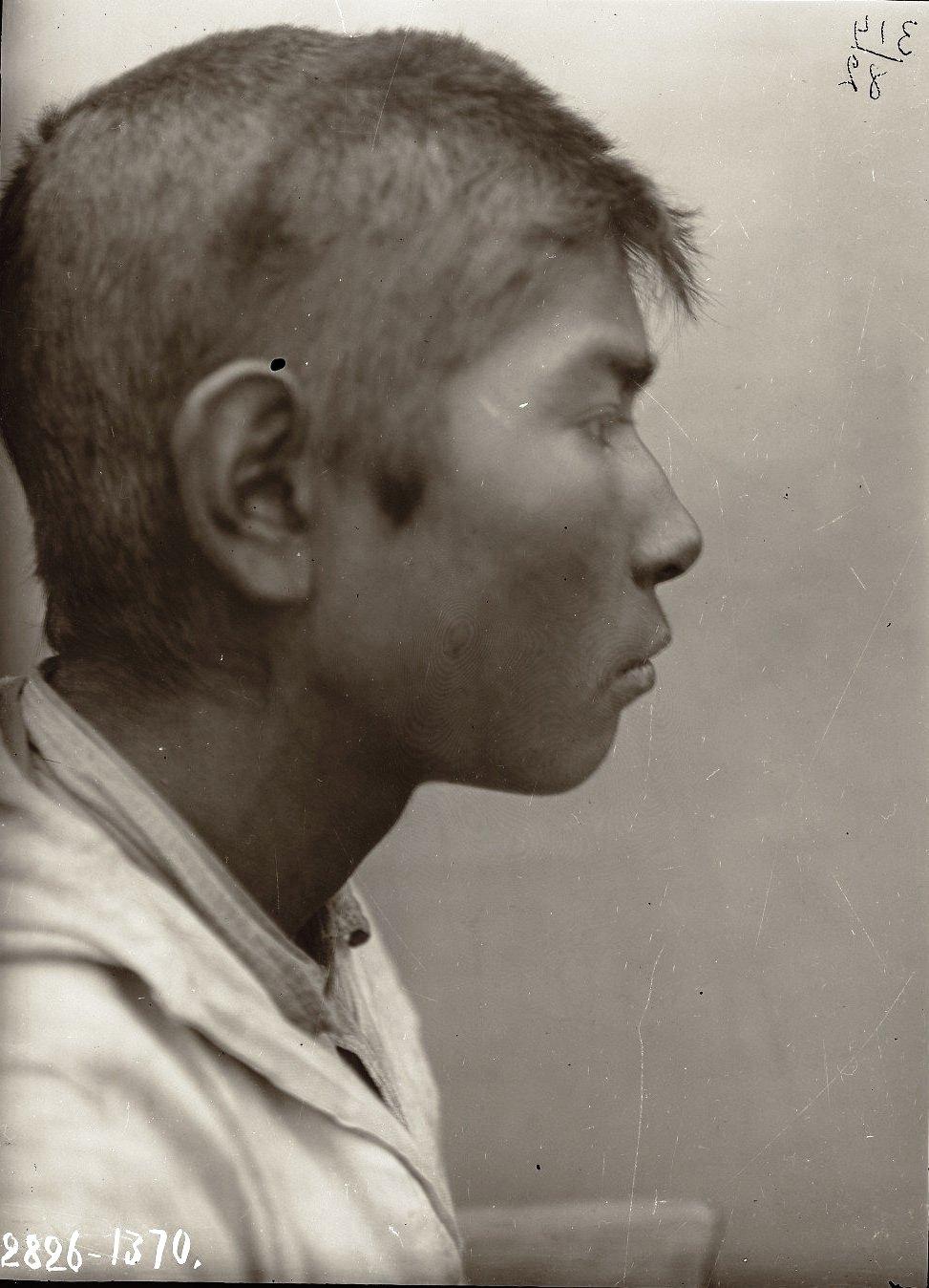 1909. Июнь - июль. Егор Кауров (профиль). Атту остров