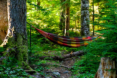 Wherever I Hang My Hammock (That's My Home)