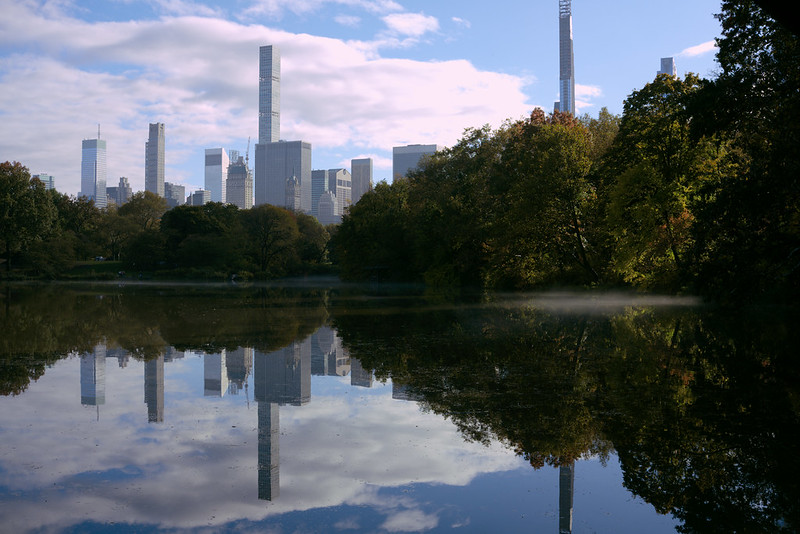Towers and trees, Central Park