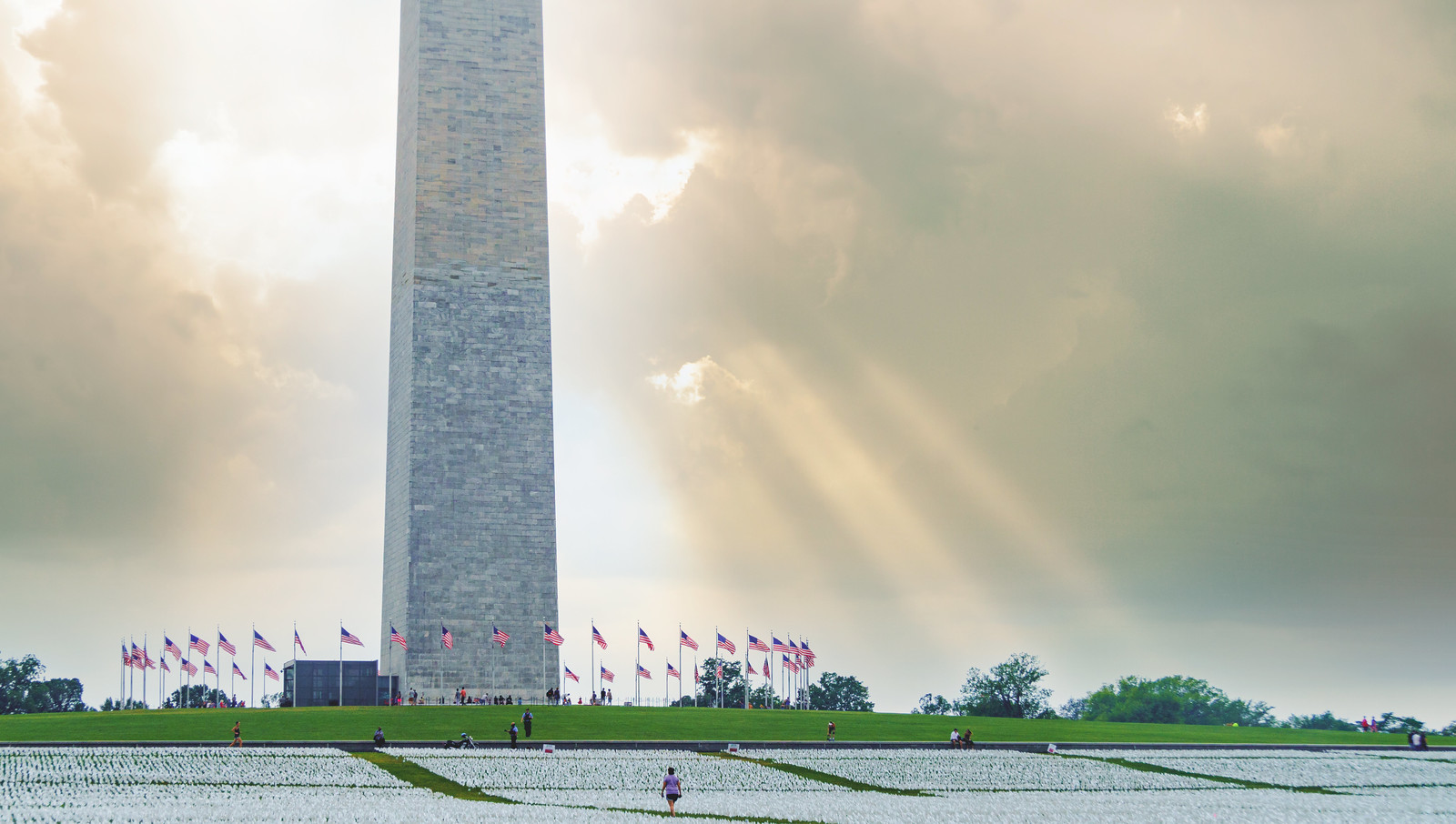 Photo Friday: They Deserved Better – Washington, DC USA