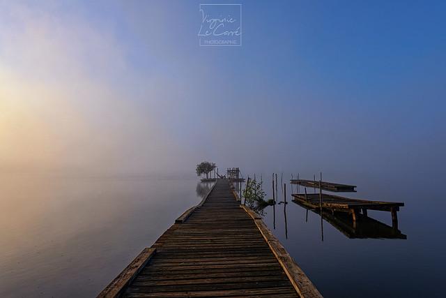 Entre brouillard et heure bleue {Explored, Sept. 19th, 2021}