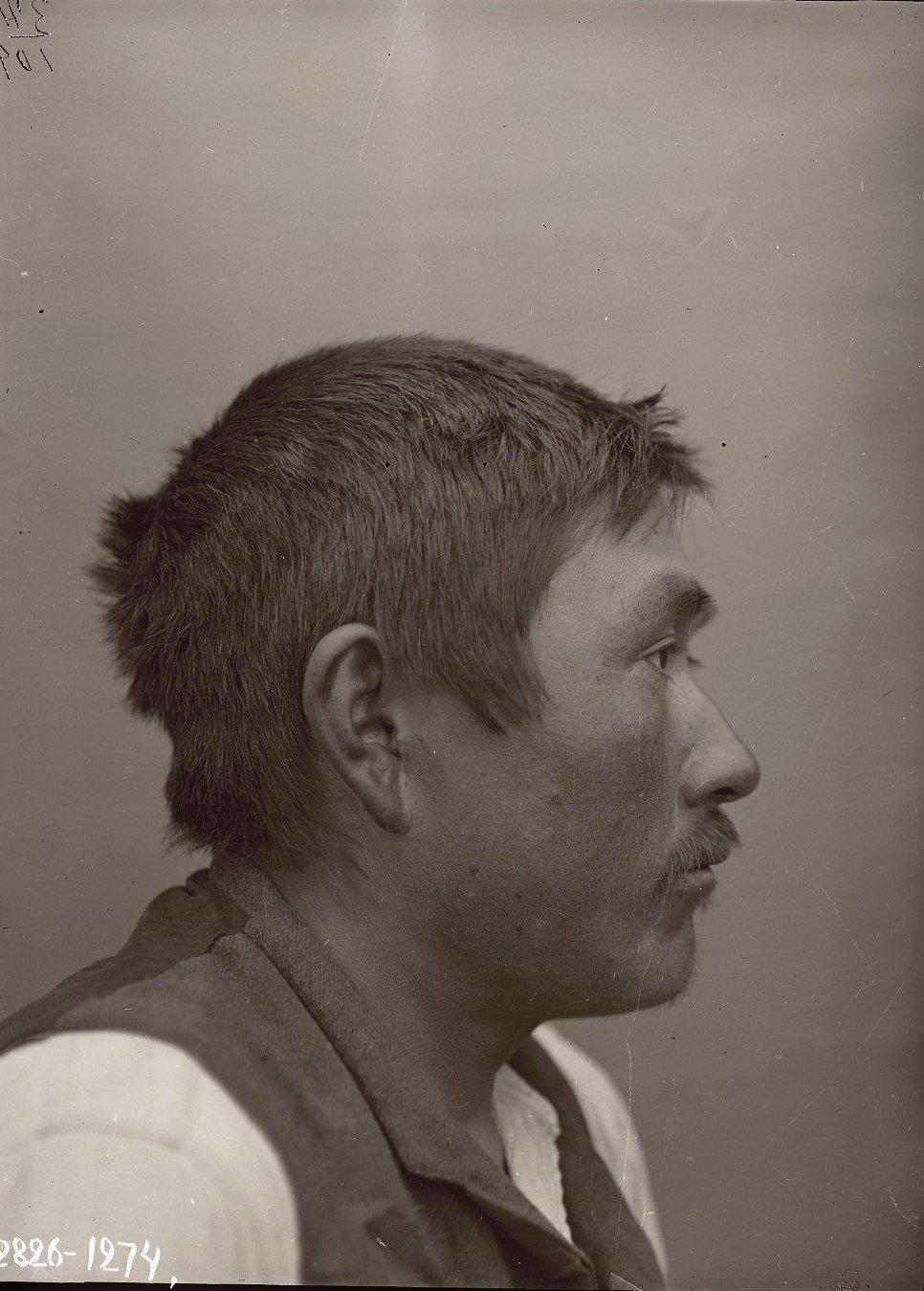 1909. 10-12 июня. Егор Худяков (профиль). Атту остров