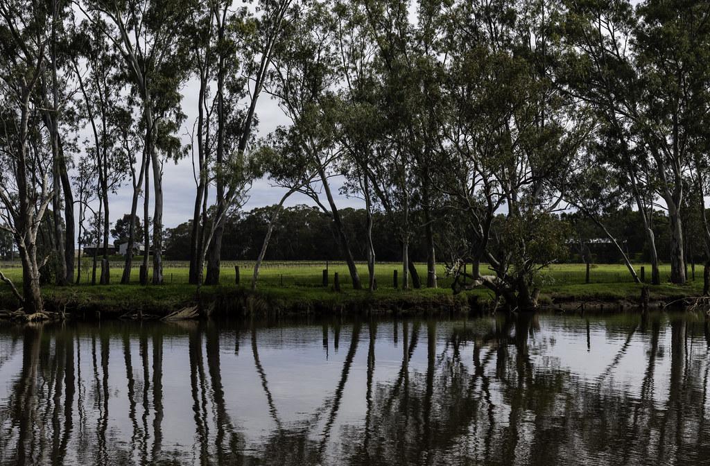 Swan River @ Wood bridge