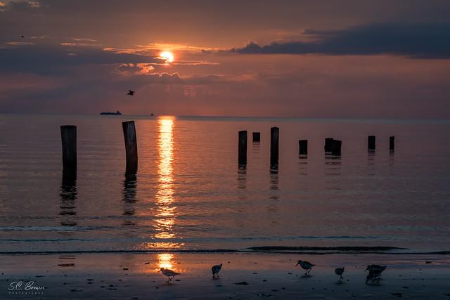 IM_24332-San Leon Sunrise 02.jpg