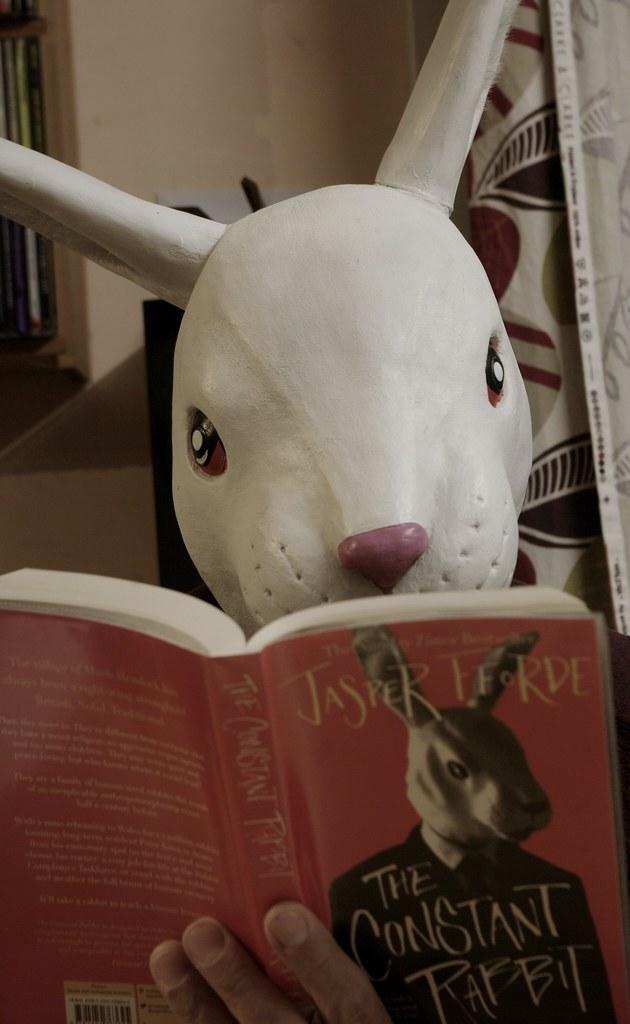 262 - 365  the constant rabbit