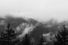 Incoming Mountain Chopper