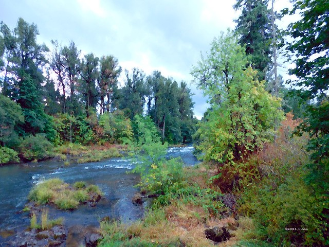 Fall Creek Flows Just Past Pengra Covered Bridge ~ Painterly
