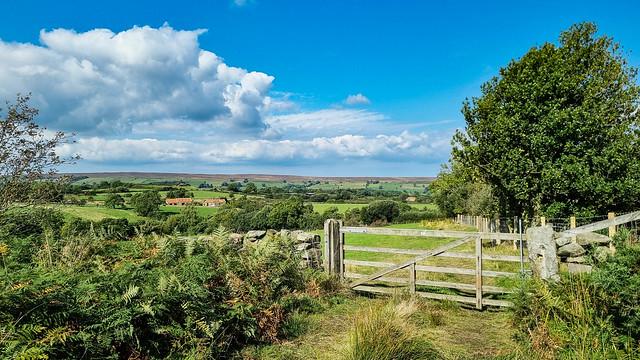 Lealholm - Glaisdale Moor