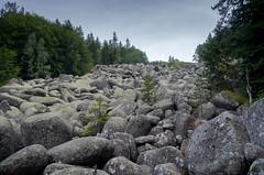"""""""River"""" of granite boulders"""